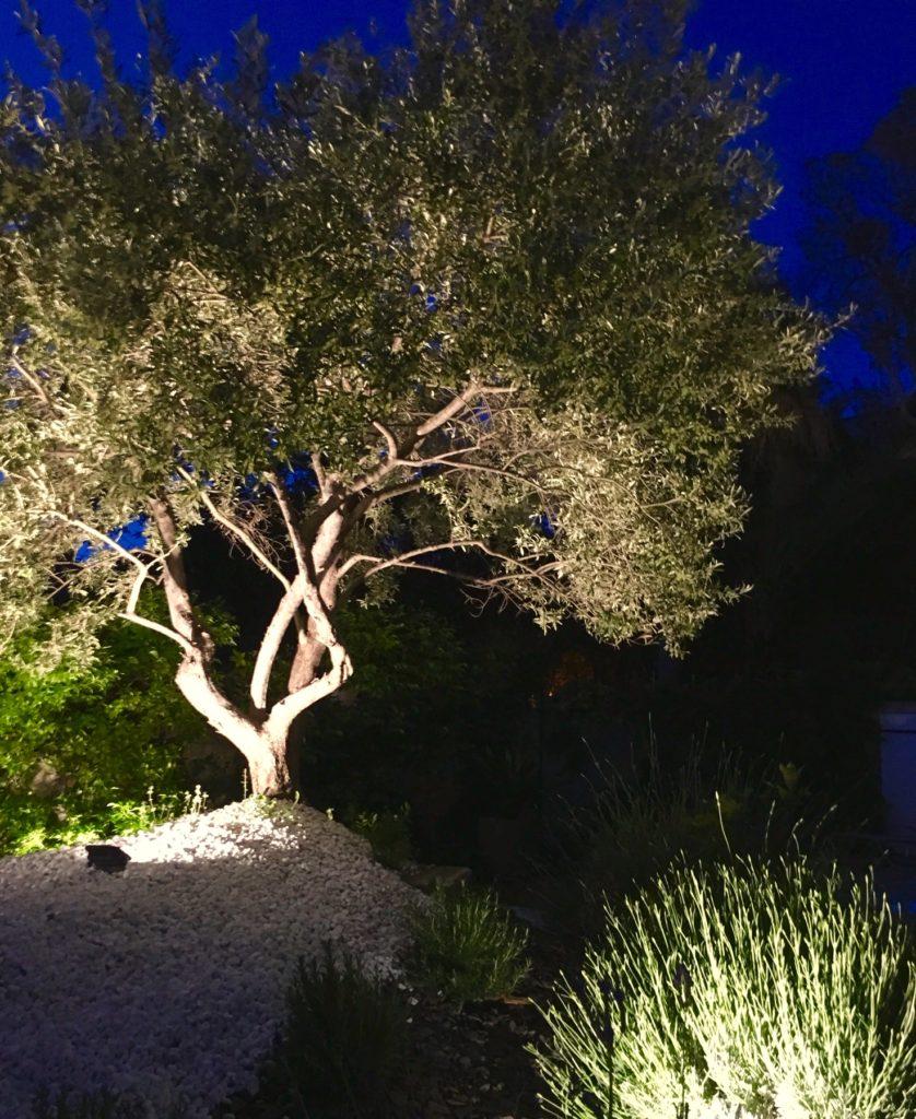 eclairage jardin paysager marseille vauban light design eclairage exterieur 2019 eclairage indirect olivier palmier 1